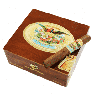 San Cristobal Quintessence Cigar